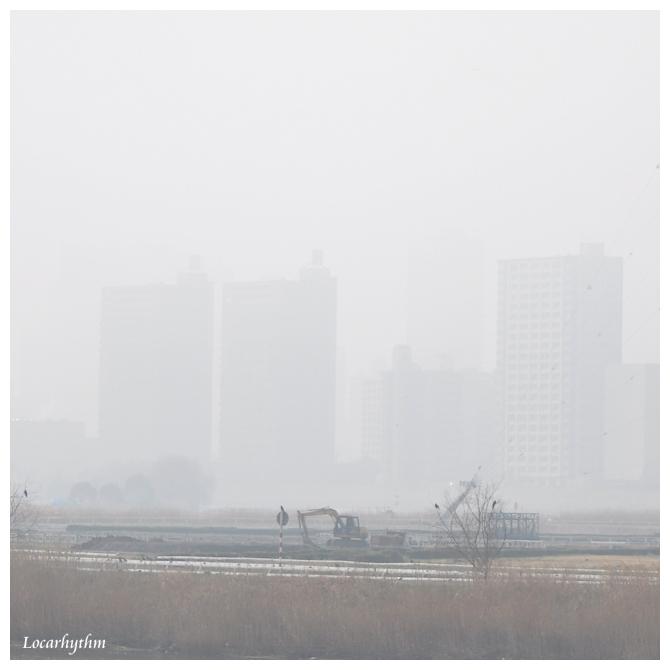 濃霧1.jpg